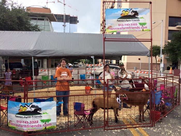 We bought our canopy to use at a large festival in Austin TX for our petting zoo and it was wonderful! Very sturdy and kept the animals and guests well ... & King Canopy 10 x 20 Universal Outdoor Canopy Shelter - Silver