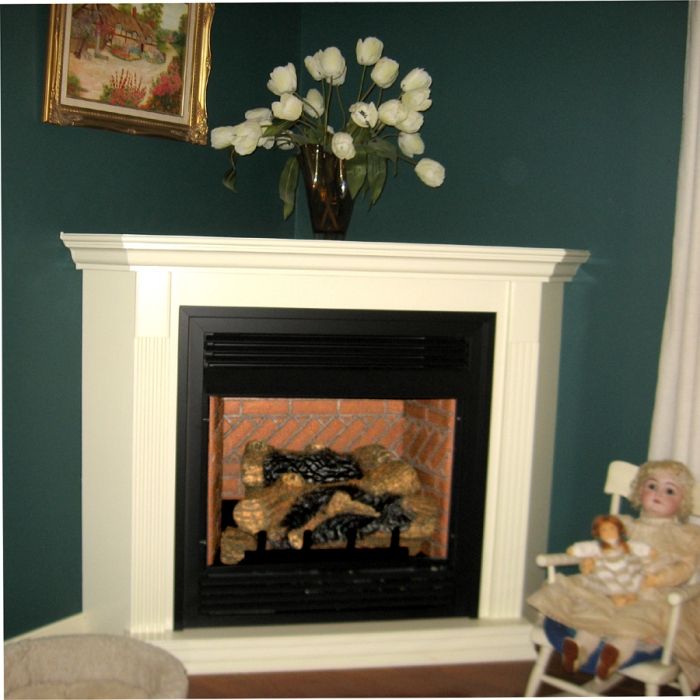 1 Fireplace Parts Professional Help Free