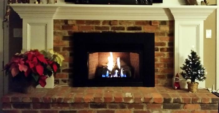 Super 1 Propane Fireplace Insert Store Experts On Gas Inserts Interior Design Ideas Skatsoteloinfo