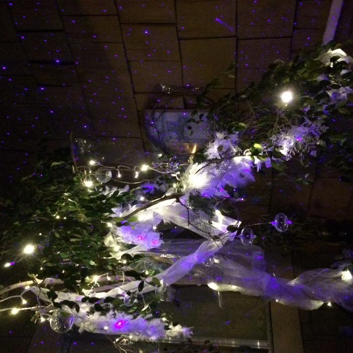 Fairy Lights String 100 Led Lights Twinkling And Steady