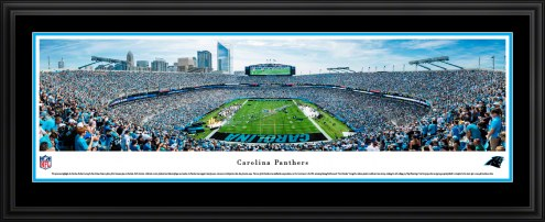 Carolina Panthers End Zone Football Panorama