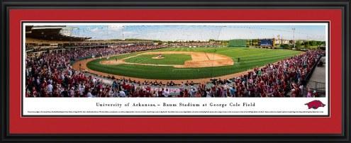 Arkansas Razorbacks Baseball Panorama