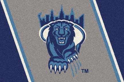 Columbia Lions College Team Spirit Area Rug