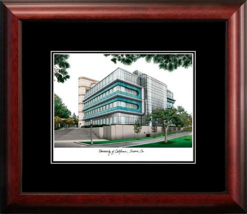 California Irvine Anteaters Campus Images Lithograph