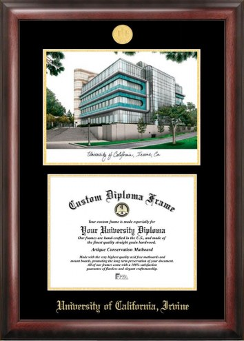 California Irvine Anteaters Gold Embossed Diploma Frame with Campus Images Lithograph