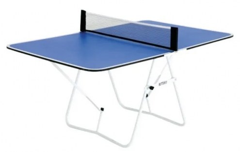 Butterfly Family Ping Pong Table