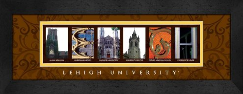 Lehigh Mountain Hawks Campus Letter Art