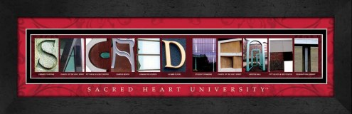 Sacred Heart Pioneers Campus Letter Art