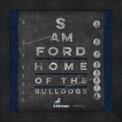 Samford Bulldogs Eye Chart