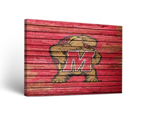Maryland Terrapins Weathered Canvas Wall Art