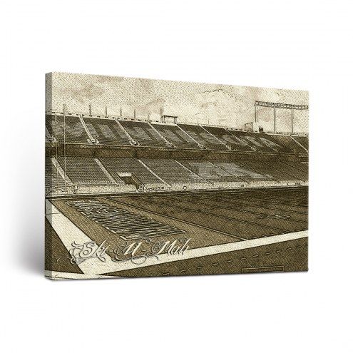 Minnesota Golden Gophers Sketch Canvas Wall Art