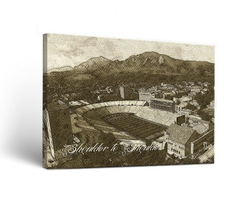 Colorado Buffaloes Sketch Canvas Wall Art