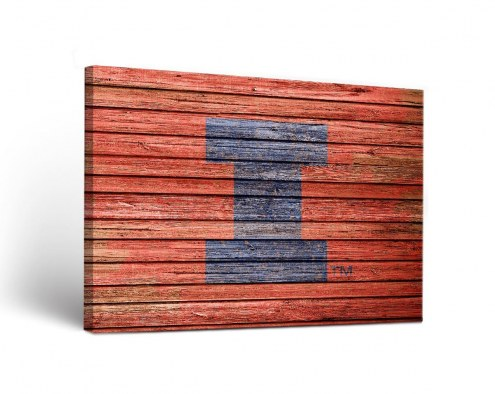Illinois Fighting Illini Weathered Canvas Wall Art