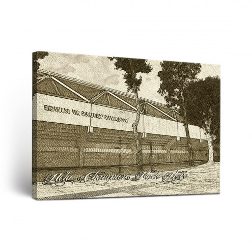 UCLA Bruins Sketch Canvas Wall Art