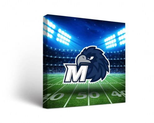 Monmouth Hawks Stadium Canvas Wall Art