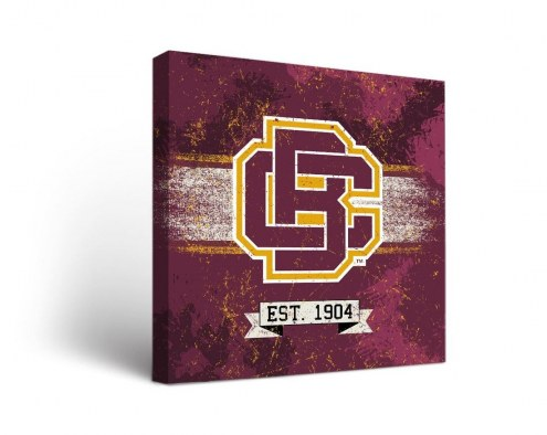 Bethune-Cookman Wildcats Banner Canvas Wall Art