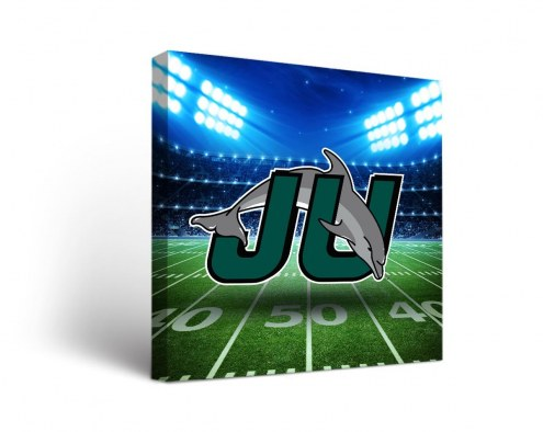 Jacksonville Dolphins Stadium Canvas Wall Art