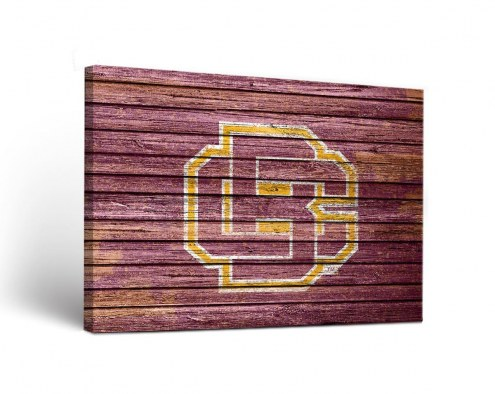 Bethune-Cookman Wildcats Weathered Canvas Wall Art