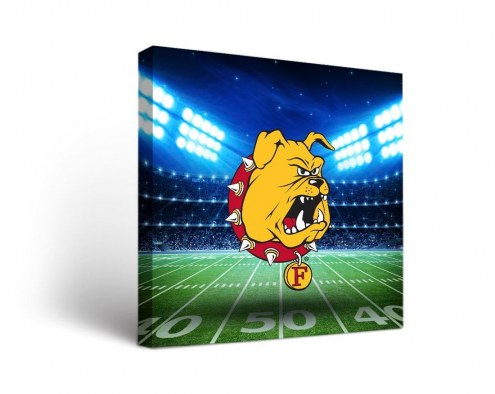 Ferris State Bulldogs Stadium Canvas Wall Art