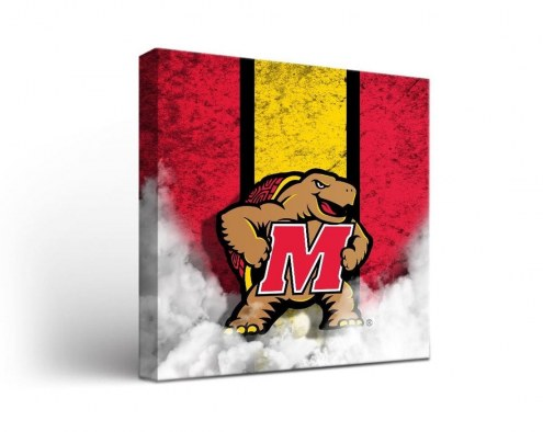 Maryland Terrapins Vintage Canvas Wall Art