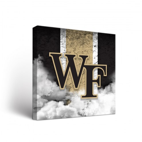 Wake Forest Demon Deacons Vintage Canvas Wall Art