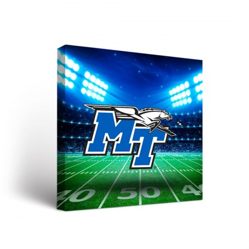 Middle Tennessee State Blue Raiders Stadium Canvas Wall Art