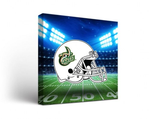 North Carolina Charlotte 49ers Stadium Canvas Wall Art