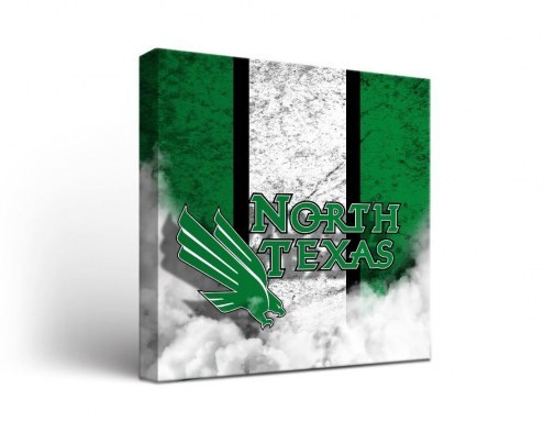 North Texas Mean Green Vintage Canvas Wall Art