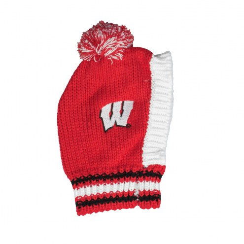 Wisconsin Badgers Knit Dog Hat