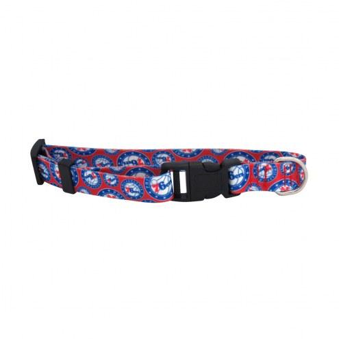 Philadelphia 76ers Team Pet Collar