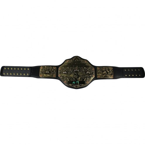 Aaron Rodgers Signed WWE World Heavyweight Championship Commemorative Title Belt