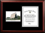Air Force Falcons Diplomate Diploma Frame