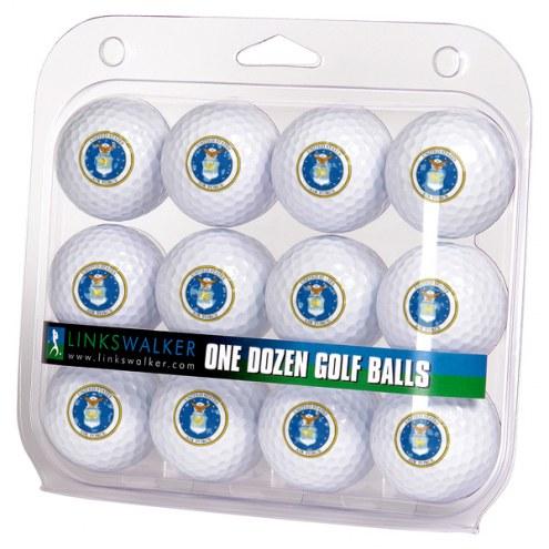 Air Force Falcons Linkswalker Dozen Golf Balls
