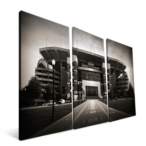 "Alabama Crimson Tide 24"" x 48"" Stadium Canvas Print"