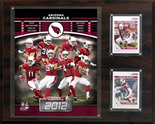 "Arizona Cardinals 12"" x 15"" Team Plaque"