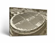 Arizona State Sun Devils Sketch Canvas Wall Art