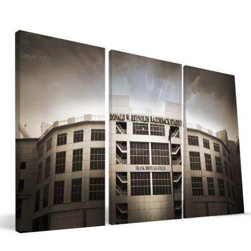 "Arkansas Razorbacks 24"" x 48"" Stadium Canvas Print"