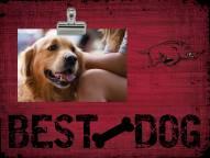 Arkansas Razorbacks Best Dog Clip Frame