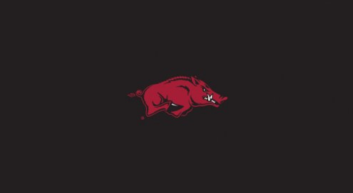 Arkansas Razorbacks College Team Logo Billiard Cloth