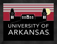 Arkansas Razorbacks Uscape Wall Decor