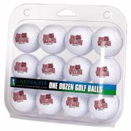Arkansas State Red Wolves Dozen Golf Balls