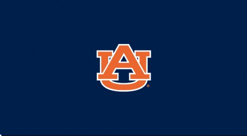 Auburn Tigers NCAA Pool Table Cloth
