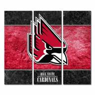Ball State Cardinals Triptych Double Border Canvas Wall Art