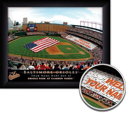 Baltimore Orioles 11 x 14 Personalized Framed Stadium Print