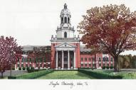Baylor Bears Campus Images Lithograph