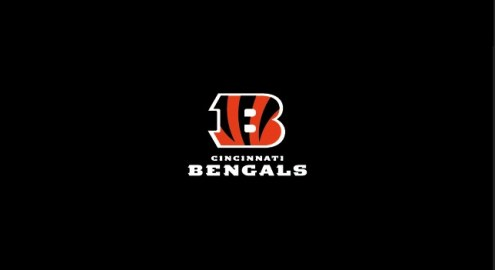 Cincinnati Bengals NFL Team Logo Billiard Cloth