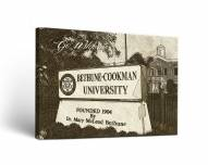 Bethune-Cookman Wildcats Sketch Canvas Wall Art
