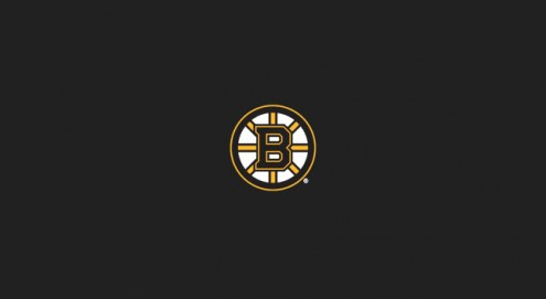 Boston Bruins NHL Team Logo Billiard Cloth