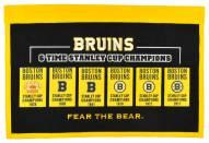 Boston Bruins Rafter Raiser Banner