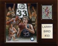 "Boston Celtics Larry Bird 12"" x 15"" Player Plaque"